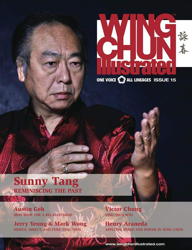 2013 Wing Chun Illustrated